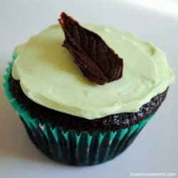 "Chocolate Mint Cupcakes - from ""Martha Stewart's Cupcakes"" 