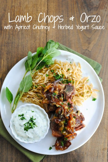 Lamb Chops & Orzo with Apricot Chutney & Herbed Yogurt Sauce - A simple yet special dish for a dinner party or just a nice dinner at home!