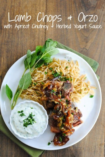 Lamb Chops & Orzo with Apricot Chutney & Herbed Yogurt Sauce - A simple yet special dish for a dinner party or just a nice dinner at home! | foxeslovelemons.com