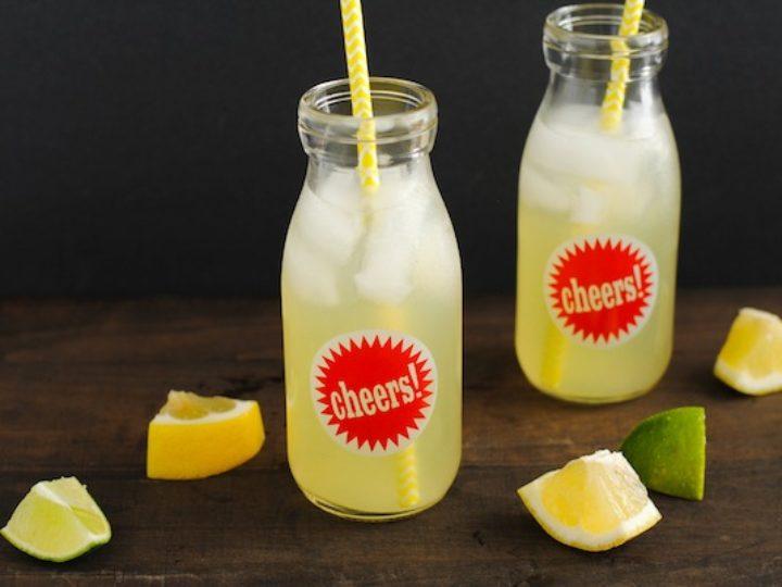 Agave Lime Lemonade Foxes Love Lemons