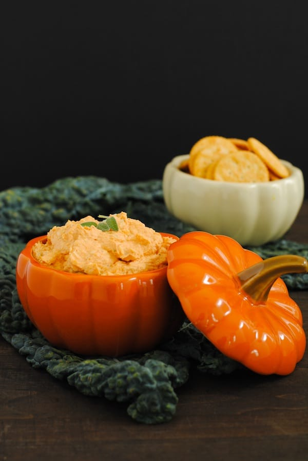 Creamy Pumpkin Parmesan Dip - A savory way to get some pumpkin goodness into your life. | foxeslovelemons.com