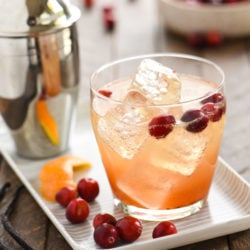 Cranberry Vanilla Gin Spritzer - Embrace autumn flavors with this refreshing, bubbly gin cocktail. Can also be made with vodka! | foxeslovelemons.com
