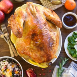 Roasted Turkey with Bourbon Apricot Glaze - Jazz up a classic roasted turkey with this simple glaze that gets brushed on when the bird comes out of the oven! | foxeslovelemons.com